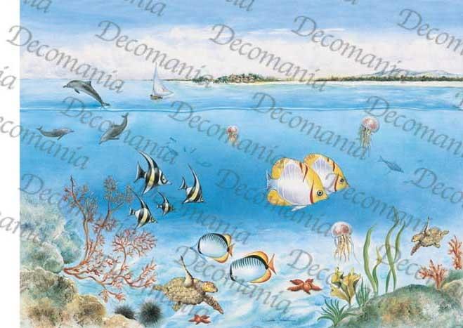 5068 fondale marino for Disegno paesaggio marino