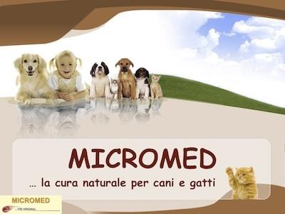 immagine_micromed_bimba_per_sito_400