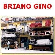 BRIANO GINO & C. S.N.C.