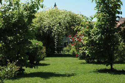 Teckno-Garden:Manutenzione Giardini a Sovicille