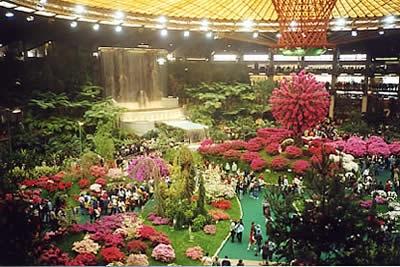 Garden Pastorelli:Fiori e Piante a Bogliasco