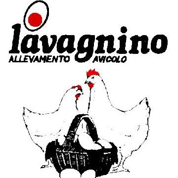 SOCIETA' AGRICOLA LAVAGNINO S.A.S. DI MUZIO G. & C.