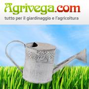 AGRIVEGA SNC DI CORDARO GIUSEPPE & C.