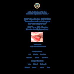 Corso dissezione temporale - Messina