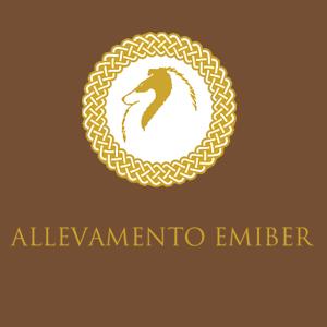 ALLEVAMENTO EMIBER