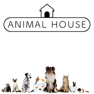 ANIMAL HOUSE di Lolli Veronica