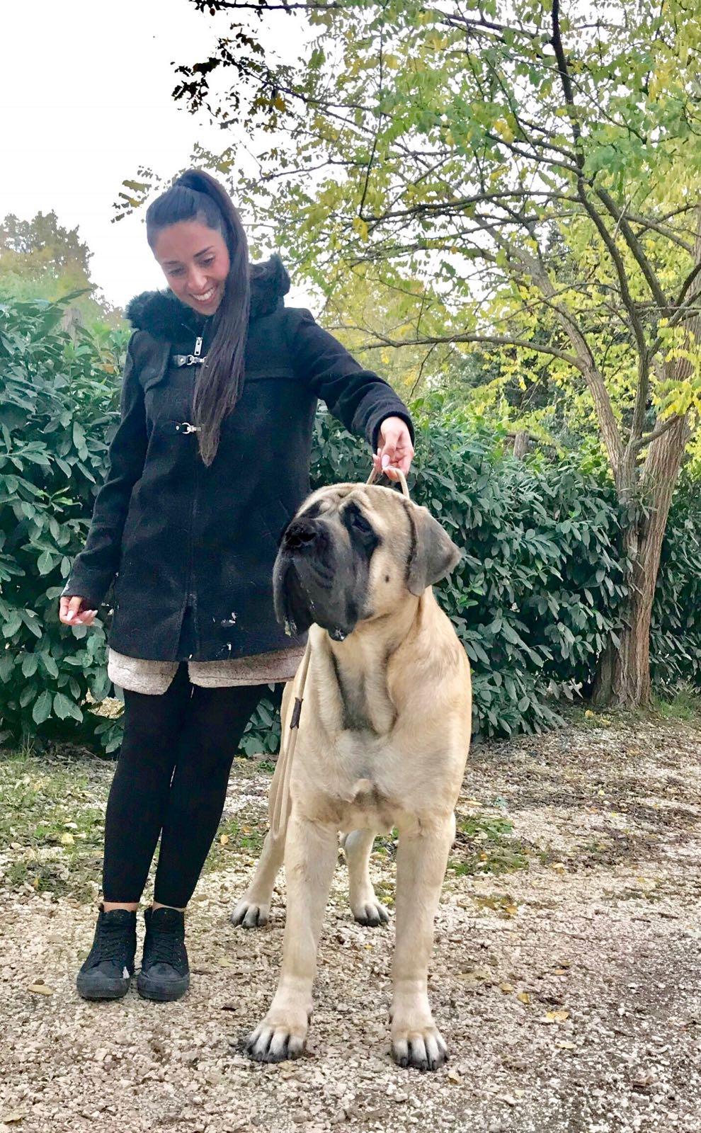 Ermineo del Fracasso con la sua handler Chiara Bramante Aliffi