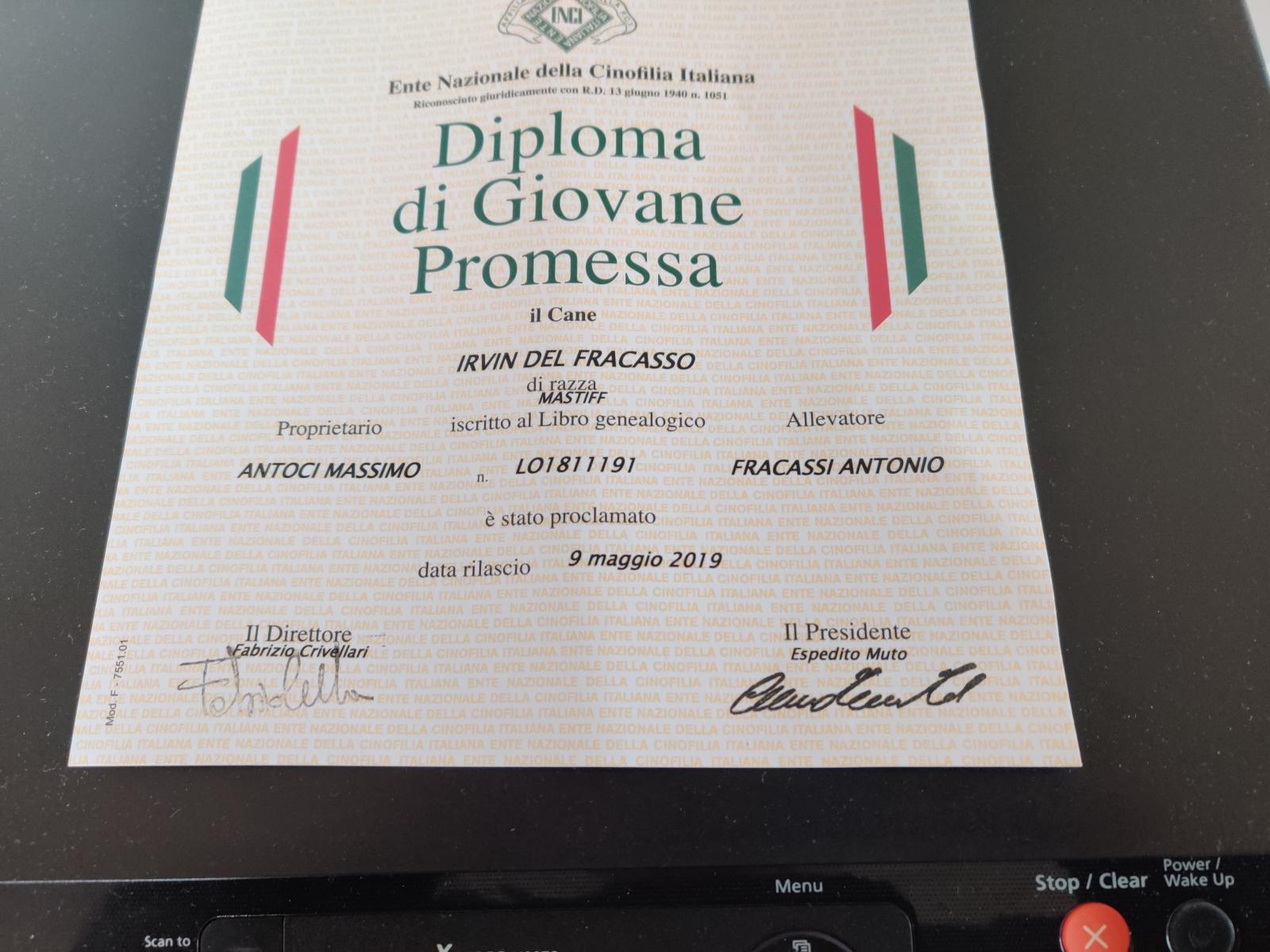 Diploma Giovane Promessa