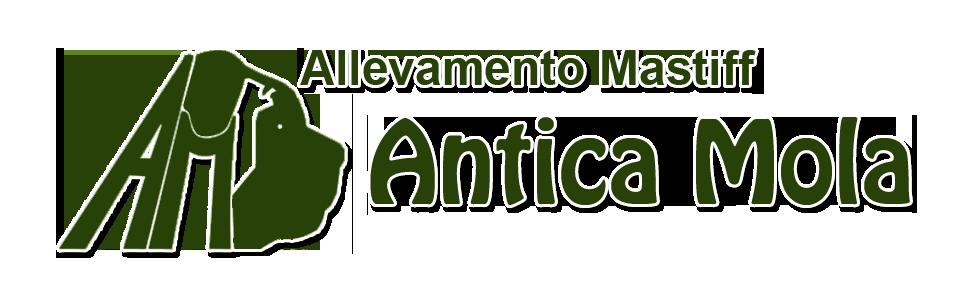 ALLEVAMENTO ANTICA MOLA