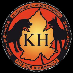 Aus der Krummholz - Allevamento Rottweiler e Malinois