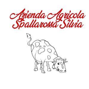 AGRITURIMO A GENOVA - AZIENDA AGRICOLA di SPALLAROSSA SILVIA