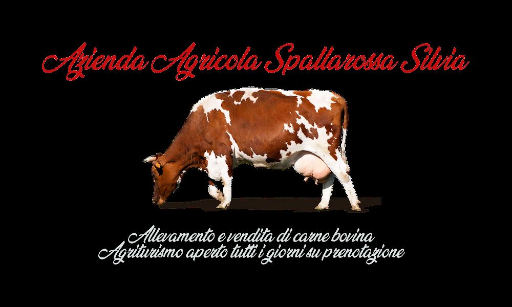 AZIENDA AGRICOLA DI SPALLAROSSA SILVIA