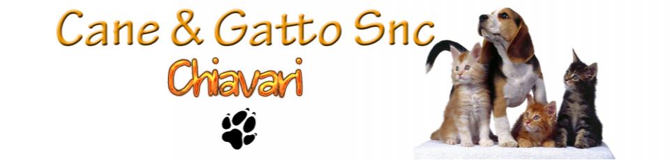 CANE & GATTO SNC DI BOTTARO ELISA & C.