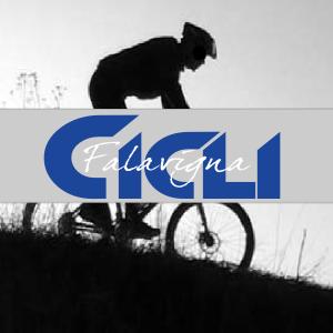 cicli-falavigna