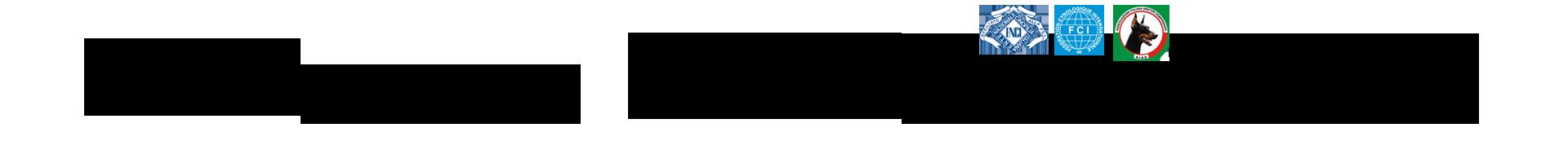 Dobermann del Munt Marin