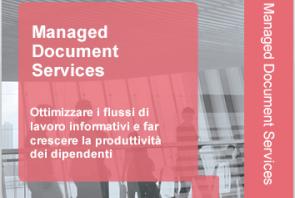 IT Services sezione