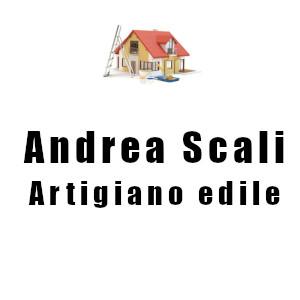 ANDREA SCALI