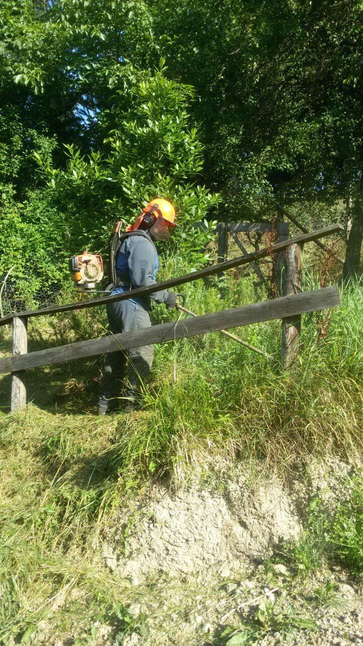EDIL FOREST DI DE MARCO SIMONE