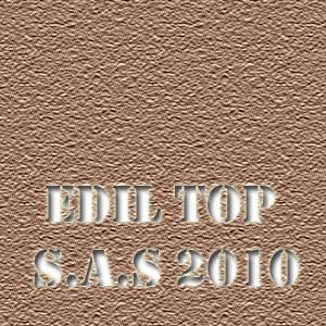 EDIL TOP S.A.S 2010