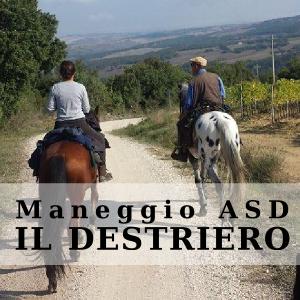 MANEGGIO ASD IL DESTRIERO