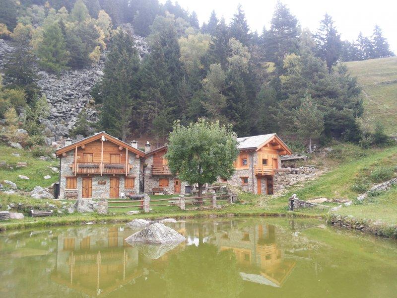 Rivestimento esterno baita in Montagna
