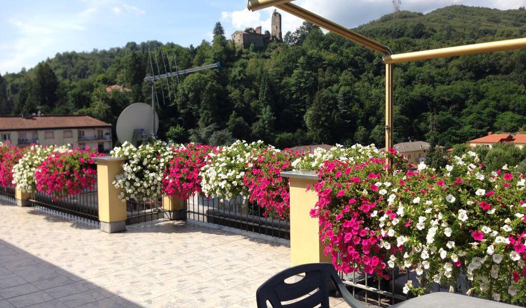 Vendita fiori e piante a Busalla