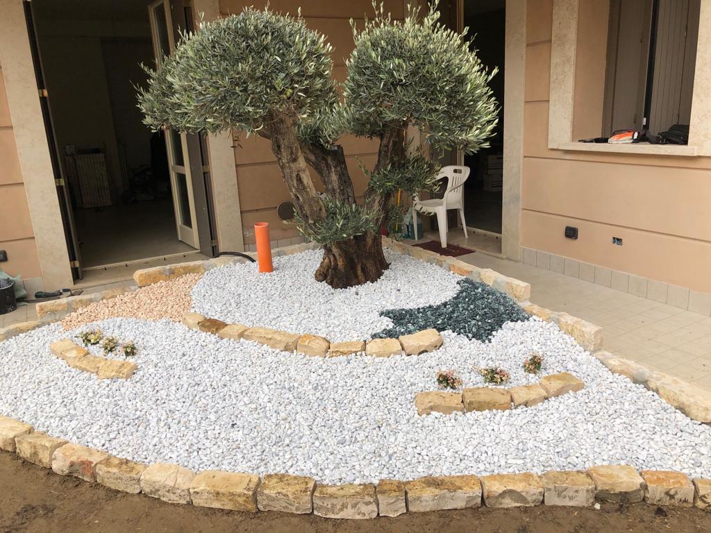 FLORICOLTURA MARIOTTI  manutenzione giardini a Cremona