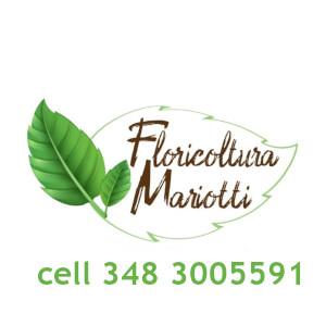 FLORICOLTURA MARIOTTI DI NADIR MARIOTTI