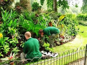 giardiniere_giardino_manuale