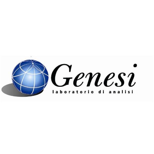 GENESI SRL