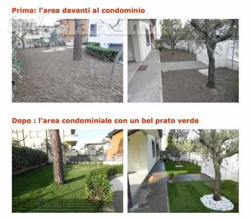 Giardinaggio Luigi Catena