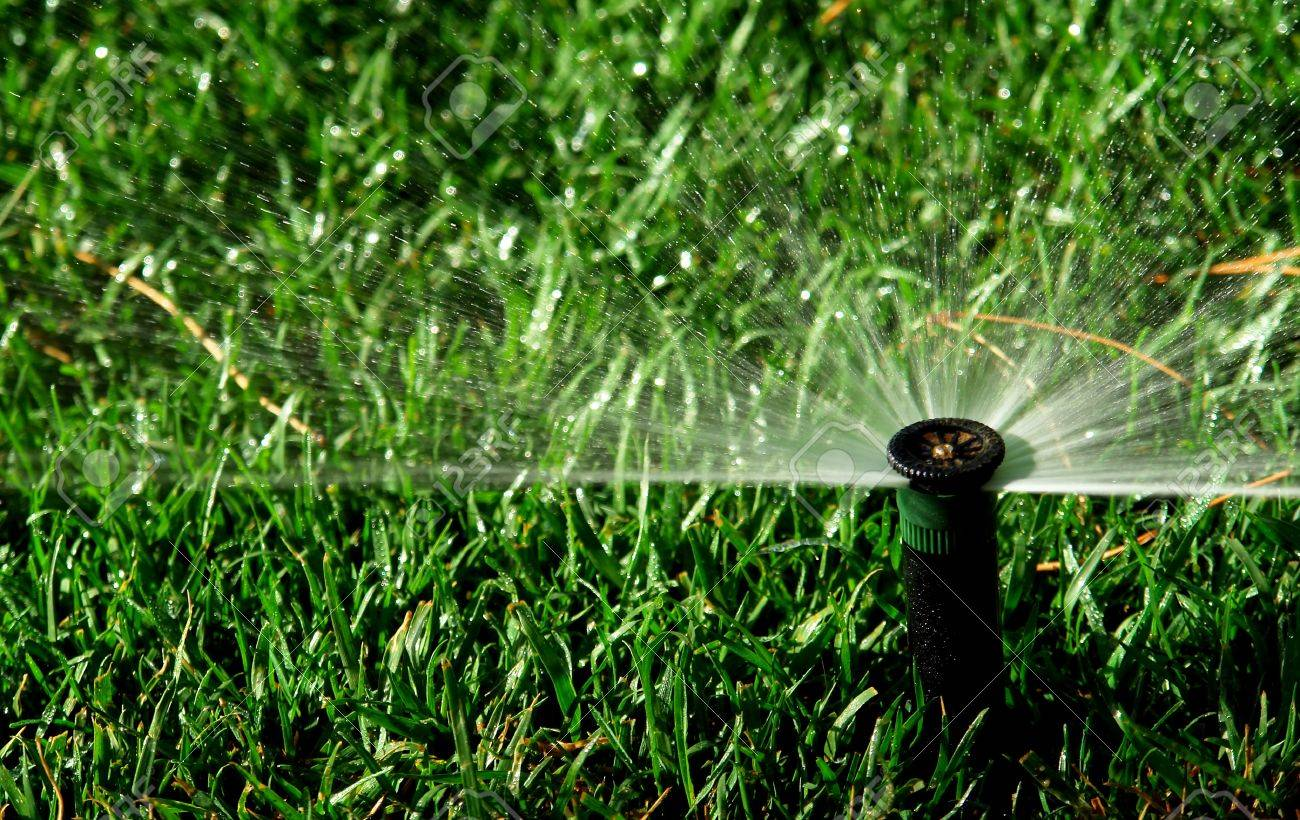 Impianti di irrigazione a Napoli
