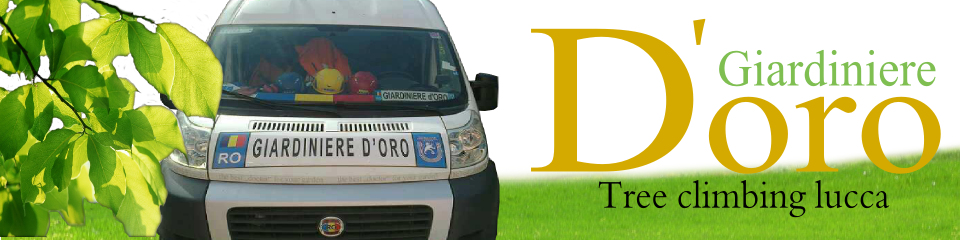 GIARDINIERE D'ORO DI PETRESCU DORU