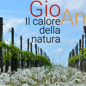 Ripuntatura con sistema gps a San Giorgio della Richinvelda. Rivolgiti a GIOAN tel 3737054657 (Anna) cell 3387910963 (Giorgio)