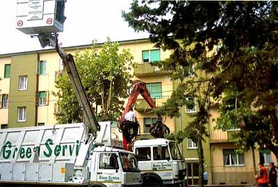 Green Service Snc