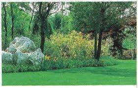 Manutenzione giardini a Grosseto. Rivolgiti a GREEN SERVICE snc tel 0566 901987 cell 347 6305038