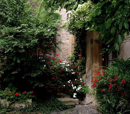 Manutenzione Annuale giardini