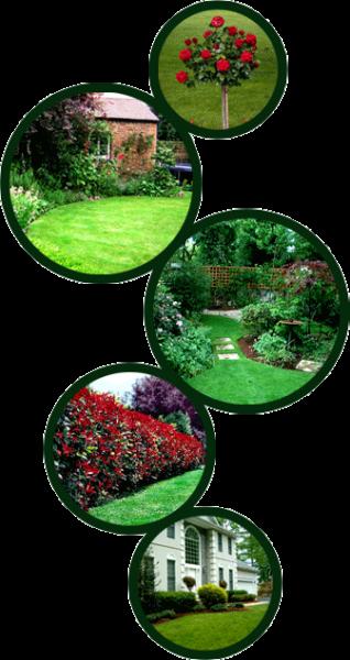 Manutenzione parchi e aree verdi a Darfo Boario Terme. Chiama GREENHOUSE DI COMINASSI MARCO tel 0364 532 540 cell 345 349 82 02promozione