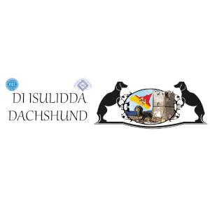 DI ISULIDDA DACHSHUND