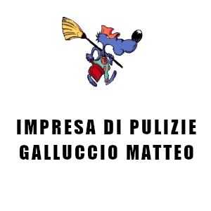 IMPRESA DI PULIZIE GALLUCCIO MATTEO