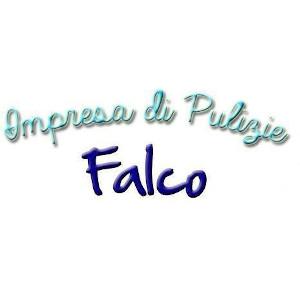 Impresa Di Pulizie a Cento. Chiama IMPRESA DI PULIZIE FALCO cell 320 8787472
