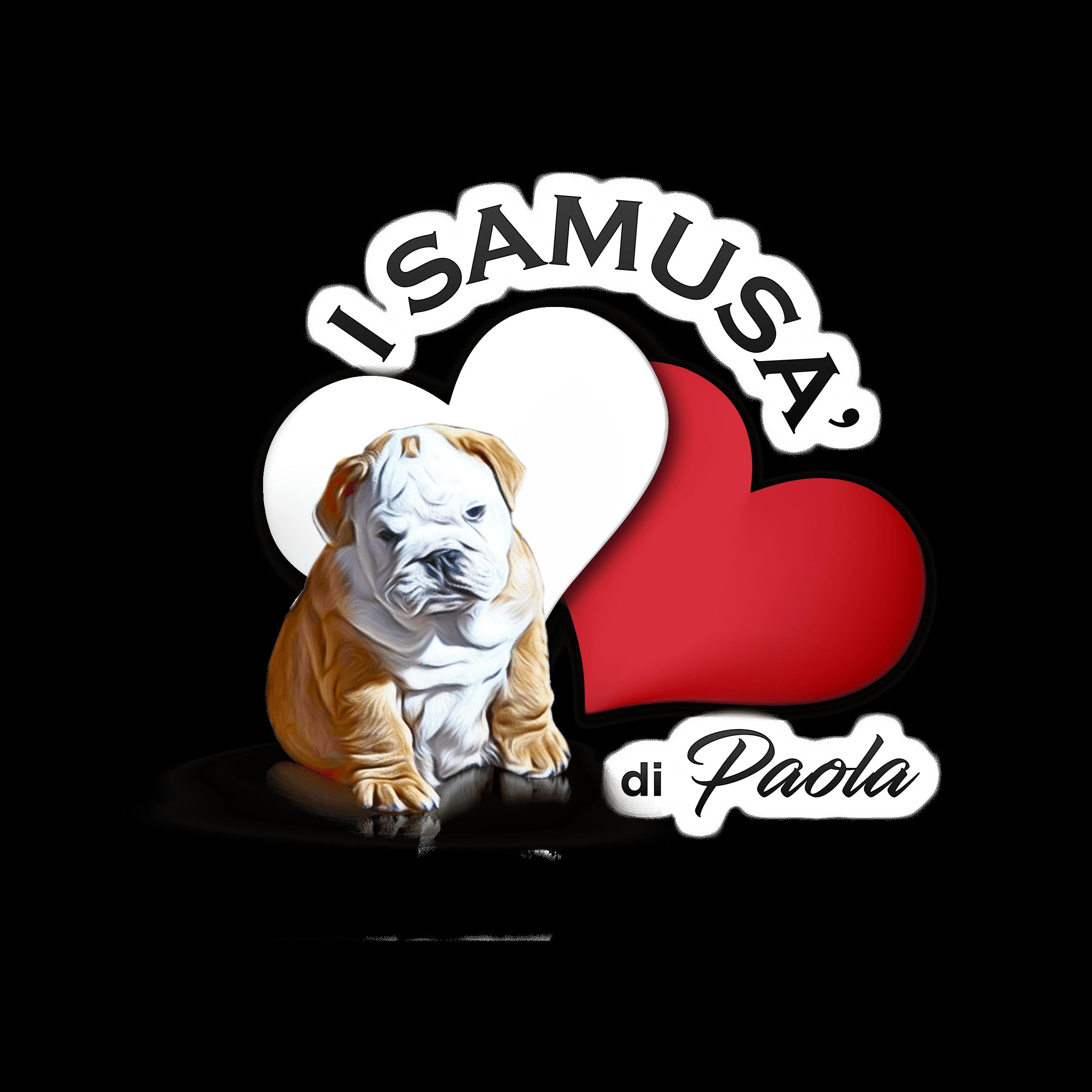 I SAMUSA' DI PAOLA