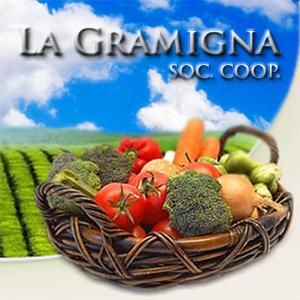 COOP. DI CONSUMO LA GRAMIGNA SOC. COOP. ARL