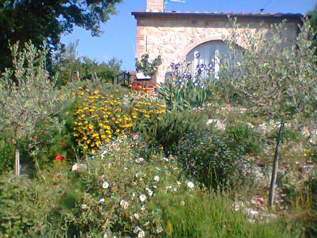Giardino Naturale - Dopo