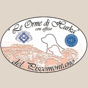 ALLEVAMENTO AMATORIALE LABRADOR RETRIEVER del Piscomontano