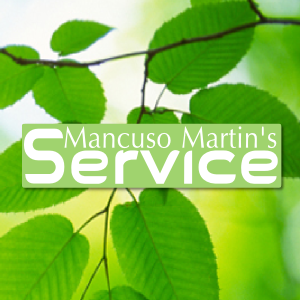 MANCUSO MARTIN'S SERVICE DI MANCUSO SALVATORE