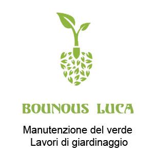Manutenzione del Verde a Bricherasio. Chiama BOUNOUS LUCA cell 3479995414
