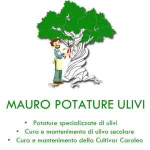 MAURO POTATURE ULIVI