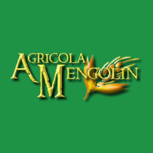 AGRICOLA MENGOLIN DI BOSCOLO PAOLO & C. SNC