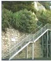 Grigliati ad Arnasco. Chiama MOLINARI E GALLIZIA S.N.C. tel 0182 761049